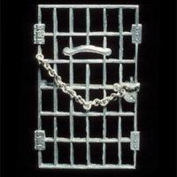 jailedforfreedompin.jpg